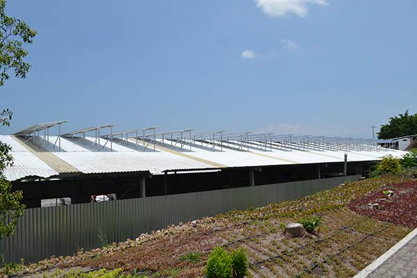 Sistema fotovoltaico Floraplant